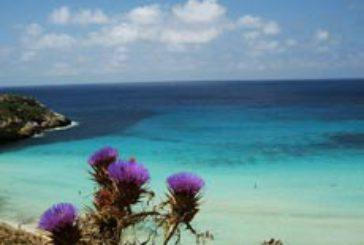 Rimini apre voli per Lampedusa, Parigi e Amsterdam