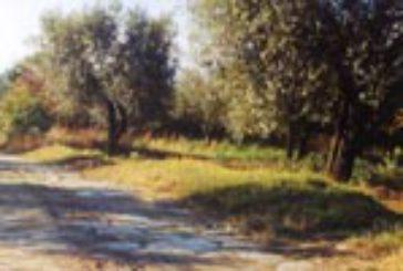 Al via il 'Cammino Sanniti', occasione per scoprire il Tratturo Molise-Puglia