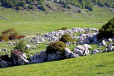 Regione stanzia 12 mln di euro per promuvere brand Abruzzo'