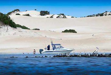 Australia, con Goin' Off Safaris nuovi pacchetti per scoprire Port Lincoln
