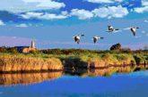 Primavera Slow, 14 settimane per scoprire le meraviglie del Parco del Delta del Po