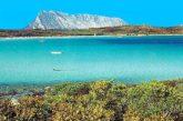San Teodoro località Top Rated di PaesiOnLine