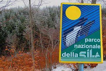 Parco Sila rilancia candidatura a patrimonio Unesco