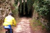 Dalla Regione ok ai fondi per rivalorizzare l'ex ferrovia dismessa 'Ciccio Pecora'