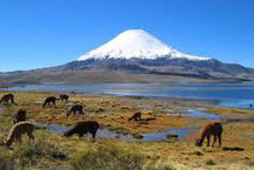 Amo il Mondo da il benvenuto al Cile
