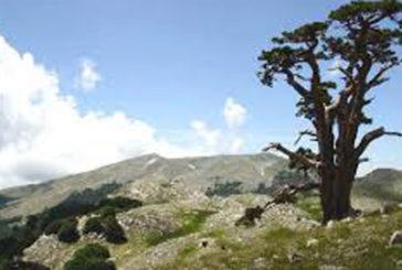 Da Regione un bando da 1,5 mln di euro per turismo rurale