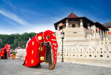 Nuove destinazioni per gli honeymooners di Turbanitalia