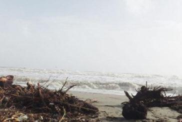 Contributi di 200mila euro per la pulizia delle spiagge in Fvg