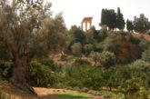La Valle Templi conquista la prima edizione del Premio Paesaggio