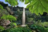 Ischia, dai Giardini La Mortella sconto per visitare Museo Archeologico di Pithecusae