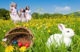 Pasqua/2, attesa mini-ripresa per gli agriturismi del Centro Italia