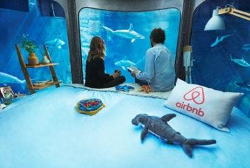 Dormire tra gli squali, a Parigi grazie ad Airbnb si può