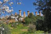 A Palermo anteprima della 72° edizione del Mandorlo in fiore