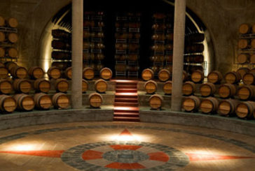 Tra vini e cantine in Cile e Argentina con Tuttaltromo(n)do