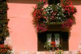 I comuni fioriti della Sicilia per la prima volta alla Bit di Milano