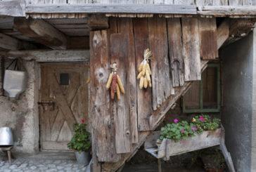 Estate in malga per gli amanti della natura e della gastronomia