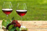 La Campania del vino presenta alla stampa 'Campania Stories'