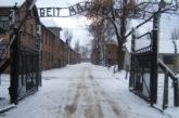 Polonia licenzia direttore Turismo per frasi su Auschwitz