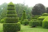 'L'Italia dei giardini' nuova guida alle aree verdi di pregio targata TCI