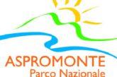 Il Parco dell'Aspromonte piace sempre più alle scuole