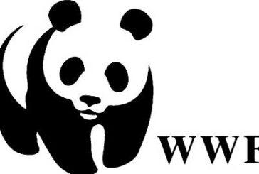 Una giornata tra la natura nelle Oasi del WWF