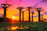 Eat Around di Margò arriva in 8 strutture ricettive del Madagascar