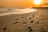 Soggiorno in Oman all'Eden Village Premium Fanar