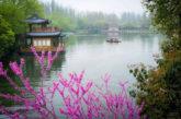 Dal 12 giugno volo diretto tra Roma a Hangzhou in Cina