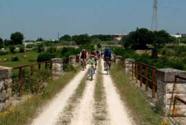 Ciclovia, Dell'Orco: ritardi saranno danno economico per Emilia Romagna e Puglia