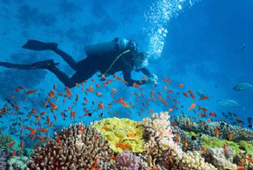 Il clima minaccia meraviglie naturali, da Kilimangiaro a barriere coralli