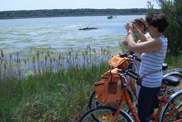 La Puglia si candida protagonista del turismo di cammini e ciclovie