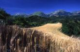 Monti Sibillini puntano a diventare Parco della ricostruzione