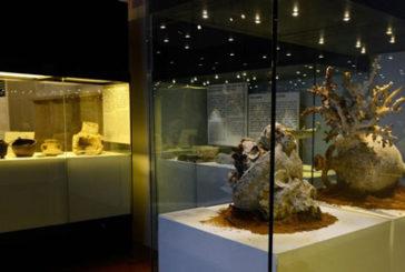 Al Palazzo Reale di Palermo in mostra 'i tesori del mare'