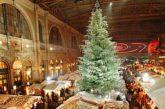 La magia del Natale di Zurigo è a sole 3 ore di treno da Milano
