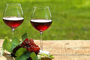 Cosenza, sulle pagine del Touring la nuova 'Strada del vino e dei sapori'