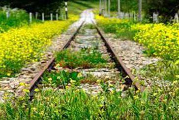 Trasporti, da Camera ok a legge su ferrovie turistiche