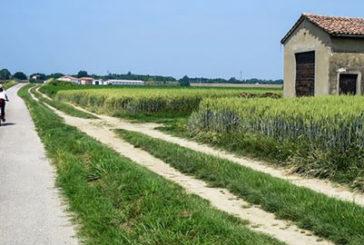 Bianchi: cicloturismo asset del turismo sostenibile