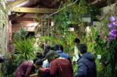 Buoni scolastici per studenti in visita alla Casa delle Farfalle