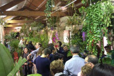 A Siracusa nuova attrazione: da marzo apre la Casa delle farfalle