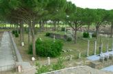 Barbera è il nuovo direttore del Parco archeologico di Ostia Antica