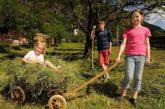 La Toscana è la regione italiana più richiesta dagli agrituristi