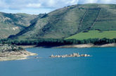 No a trivelle nei luoghi di Montalbano, Ragusa ha scelto il turismo