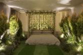 Su Airbnb in affitto appartamento che sembra un bosco