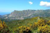 Il Parco dei Nebrodi si candidacome polo dell'ecoturismo