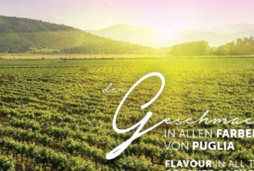 I vini di Puglia si presentano a Dusseldorf ma su brochure c'è vigna cilena