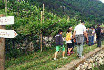 Il Trentino si prepara alla primavera con Gemme di Gusto