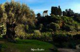 Agrigento inaugura percorso ipogeo alla Kolymbethra