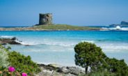 La Gallura regina dell'estate 2016 in Sardegna, lo dicono i dati del Sired
