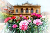Nel weekend Piazza Armerina si colora di fiori e di eventi aspettando Teatri di Sicilia