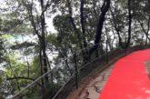 In Liguria il red carpet più lungo al mondo che unisce Rapallo, S. Margherita e Portofino